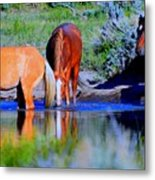 wild Palomino stallion of the Great Basin Country  Metal Print