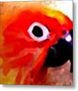 Wild Parrot Metal Print