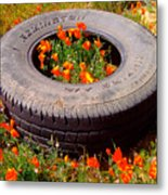 Wild Poppies Recycled Metal Print
