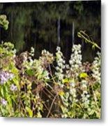 Wild Riverside Weeds And Flowers Metal Print