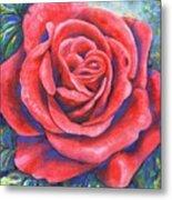 Wild Rose Three Metal Print