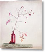 Wild Rosehips In A Bottle Metal Print