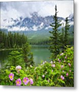 Wild Roses And Mountain Lake In Jasper National Park Metal Print