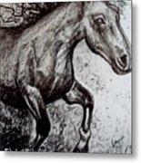 Wild Stallion Metal Print