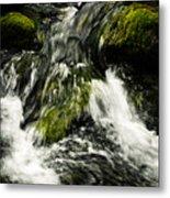 Wild Stream Of Green Moss Metal Print