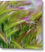 Wild Summer Grass Metal Print