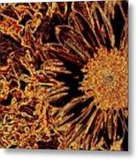 Wild Sunflower Abstract Metal Print