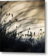Wild Things - Number 2 Metal Print