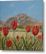 Wild Tulips In Central Crete Metal Print