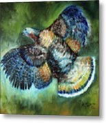 Wild Turkey In Flight Metal Print