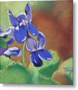 Wild Violets Metal Print