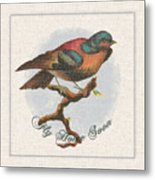 Wildcraft Bird Print On Linen Metal Print
