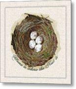 Wildcraft Nest On Linen Metal Print
