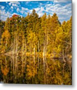 Wilderness Pond 3 Metal Print