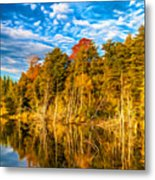 Wilderness Pond - Paint Metal Print