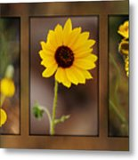 Wildflower 3 Metal Print