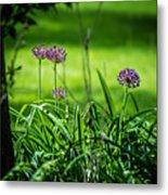 Wildflower Bloom Metal Print