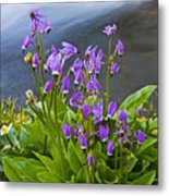 Wildflower Cascade Metal Print by Mike  Dawson