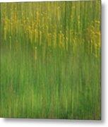 Wildflower Fields Abstract Metal Print