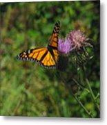 Wildflower Monarch Metal Print