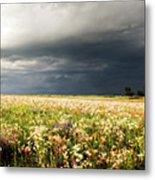 Wildflower Panorama 2008 Metal Print