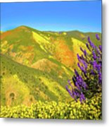Wildflower Power Metal Print