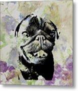 Wildflower Pug Metal Print