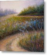 Wildflower Road Metal Print