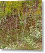 Wildflower Tapestry In Jefferson County Metal Print