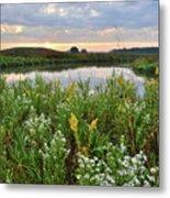 Wildflowers Adorn Nippersink Creek In Glacial Park Metal Print