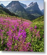 Wildflowers And A Glacier Metal Print