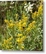 Wildflowers And Bee Metal Print