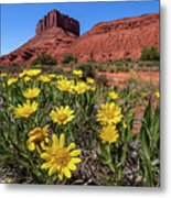 Wildflowers And Butte Metal Print