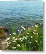 Wildflowers By The Lake  Metal Print