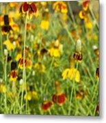 Wildflowers Four Metal Print