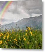 Wildflowers In Crested Butte Metal Print