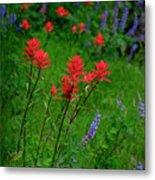 Wildflowers In Mountains Wilderness Metal Print
