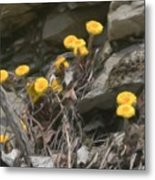 Wildflowers In Rocks Metal Print