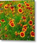 Wildflowers On The Barb Metal Print