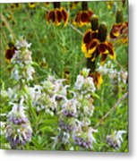 Wildflowers Seven Metal Print