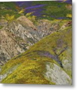 Wildflowers Up The Hills Of Temblor Range At Carrizo Plain National Monument Metal Print