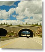 Wildlife Crossing Metal Print
