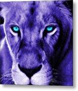 Wildlife Lion 12 Metal Print