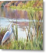 Wildlife Refuge Metal Print