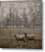 Willamette Valley Oregon Metal Print