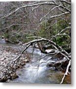 Williams River In Winter Metal Print