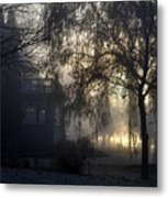 Willow In Fog Metal Print