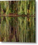 Willow Reflection Metal Print