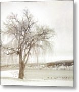 Willow Tree In Winter Metal Print