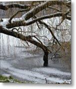 Willow Tree On The Frozen Lake Detail Metal Print